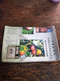 报纸剪报自订本 连载文学小说类~~龙票 王跃文 李跃森著 1~46篇全  大河报2004