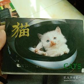 1989年猫明信片三张一合