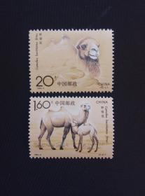 《1993-3T野骆驼》(新邮票)0