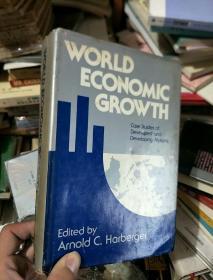 英文原版经济管理系列—world economic growth世界经济增长(精装)