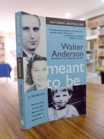 WALTER ANDERSON:Meant To Be(沃尔特·安德森:本来就是)