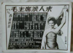 歌曲《毛主席派人来》照片