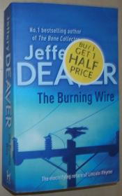 英文原版小说 The Burning Wire: Lincoln Rhyme Book 9 (Lincoln Rhyme Thrillers) 平装 2011 by Jeffery Deaver  (Author)