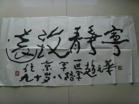 赵元华:书法:宁静致远(带书法集)