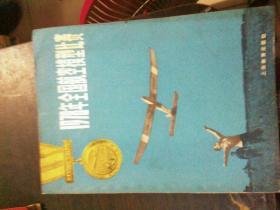 1978年全国航空模拟比赛