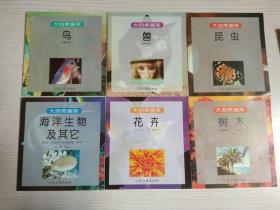 大自然画库 全六册