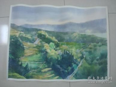 大幅无款水彩画4..........,约75*57厘米