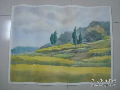 大幅无款水彩画35.........,约75*57厘米
