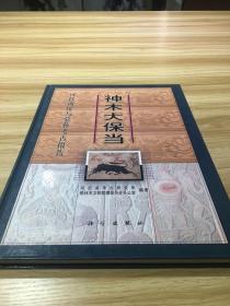 神木大保当:汉代城址与墓葬考古报告