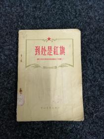 到处是红旗(第二次国内革命战争时期的几个故事)