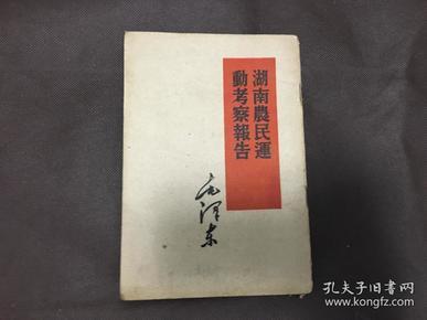 湖南农民运动考查报告