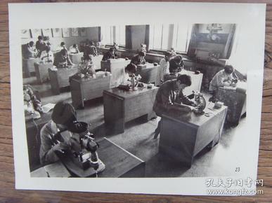 老照片:【※ 1982年,杭州市,浙江大学学生在实验室※】