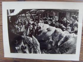 老照片:【※ 1982年,四川彭县(彭州市),居民在购买猪肉 ※】