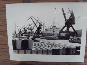 老照片:【※ 1982年,繁忙的天津新港码头 ※】港口 海港