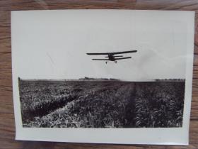 老照片:【※ 1982年,河南省在民航局配合下,用飞机在小麦产区施化肥 ※】