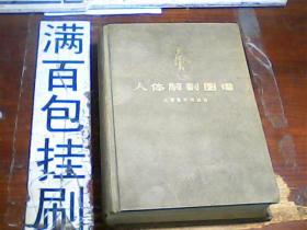 人体解剖图谱 普及本