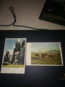 50-60年代的出的画片:云南风光2张合售(背不是明信片格式)上海人民美术出版社出版