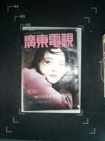 广东电视周刊 248