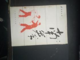 南拳拳术(风采丛书)