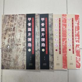 殷墟甲骨文书体分类萃编四本合售(甲骨拓片精选1 2  甲骨照片精选1 2)