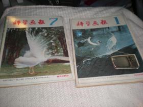 科学画报  1982年1.7期
