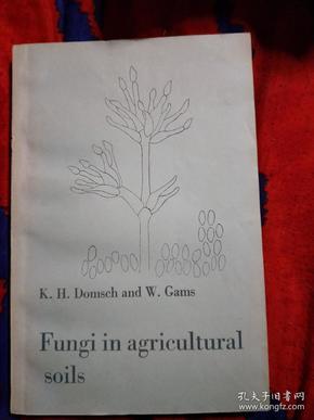 农业土壤中真菌 德文