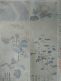 《中国书画报》2016年5月14日 第37期  孙艾花乌两幅  《蚕桑图》《木棉图》