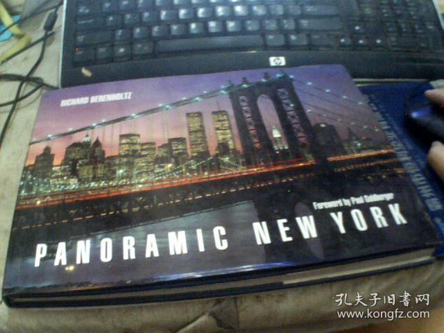PANORAMIC NEW YORK (英文原版)大16横开精装本