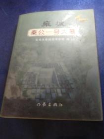 雍城——秦公一号大墓