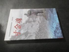 中国近代海战场纪实·湛江篇 寸金魂