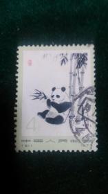 编61熊猫