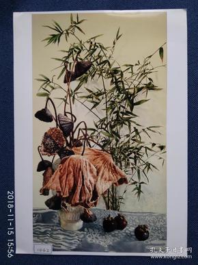 水粉画参赛作品签名照片《荷合竹影》作者:孙海佳 (黑龙江省美术家协会会员,水彩画专业委员会会员)