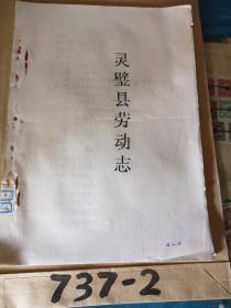 灵璧县劳动志