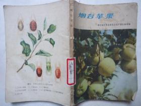 烟台苹果  出版社 : 山东人民出版社