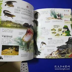 中国儿童百科全书--上学就看:ag游戏直营网 平台园