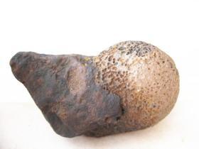 """玛瑙原石,花纹玛瑙原石,""""猴头菇""""非常漂亮,大自然的神奇造化,稀有罕见,难得一见收藏佳品"""
