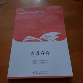 古道弯弯一一新疆民族文学原创和民汉互译作品工程