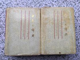 中药大辞典(缩印本)(上下)