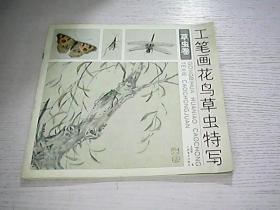 工笔画花鸟草虫特写.草虫卷