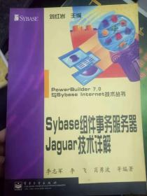 《Sybase组件事务服务器 Jaguar技术详解》