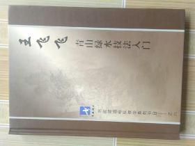 王飞飞  青山绿水技法入门