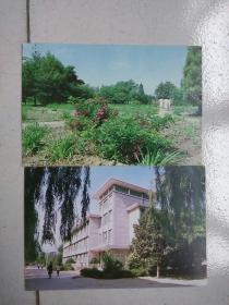 民信片:植物园、行政楼 两张合售