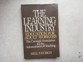 The Learning Industry. Education for Adult Workers(英文原版)