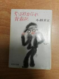 日本原版书:やぶれかぶれ青春记(64开本)