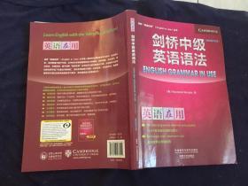 剑桥中级英语语法(第四版中文版)(剑桥英语在用丛书)