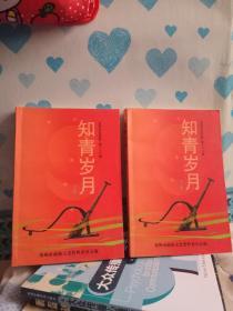 郑州文史资料(第二十八辑)--知青岁月(上下,全二册)(1957年起郑州知青上山下乡...)