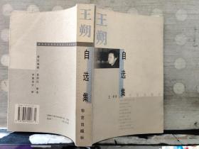 王朔自选集