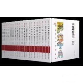 中国手艺传承人丛书( 全二十册)
