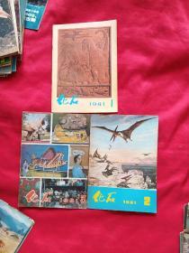 化石(1981年1、2、3期)