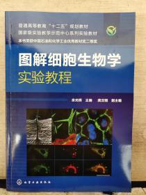 图解细胞生物学实验教程(2019.1重印)